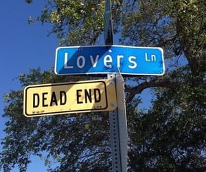 lovers, aesthetic, and tumblr image