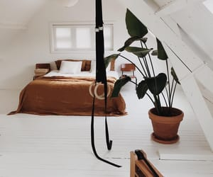 beautiful, bed room, and ideas image