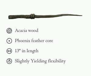 book, harry potter, and wand image