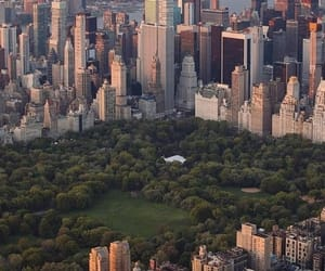 buildings, Central Park, and city image