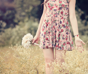 :3, flowers, and photo image
