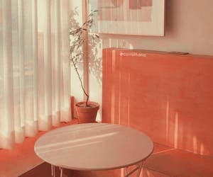 aesthetic, header, and orange image