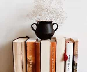article, books, and lifestyle image