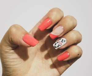 coral, nail art, and floral image