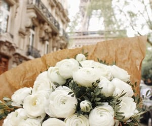 flowers, paris, and white image