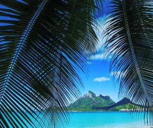 bora bora, holidays, and resort image