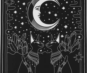 tarot and The Moon image