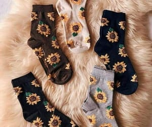 sunflower, socks, and fashion image