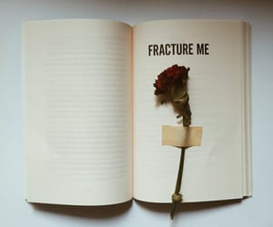 books, flower, and shatterme image