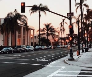 palm trees, sky, and street image