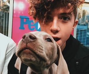 puppy, jack avery, and why don't we image