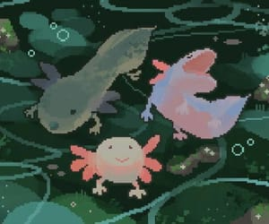 art, axolotl, and grunge image