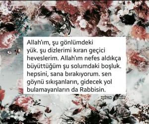 tumblr, türkçe, and mydream-16 image