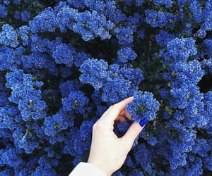 aesthetic, blue, and blue aesthetic image