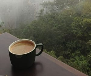 coffee, rain, and nature image