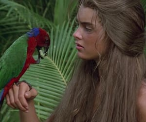 80s, beautiful, and film image