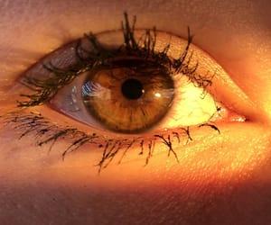 brown eyes, eye, and girl image