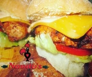 article, blogger, and burgers image