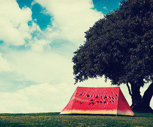 boy, tent, and fashion image