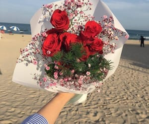 flowers, rose, and beach image