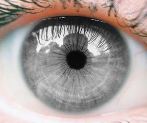 eyes, aesthetic, and grey eyes image