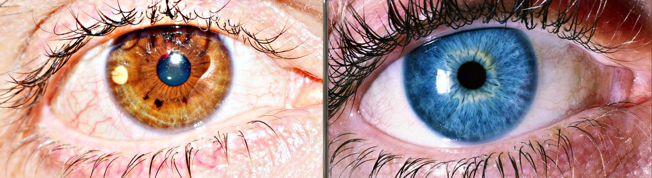 art, eye, and me image