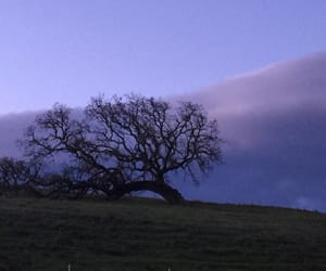 beautiful sky, on a hill, and santa ynez valley image