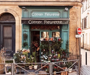 travel, flowers, and france image