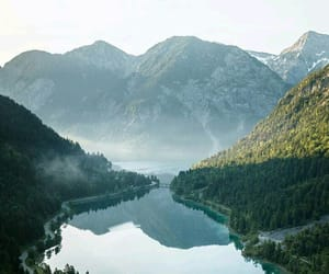 austria, europe, and forest image