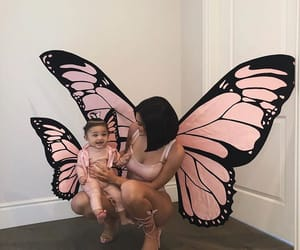 butterfly, cute, and costum image