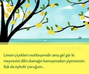 ask, edebiyat, and türkçe sözler image