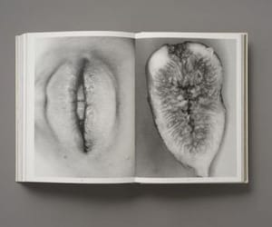 fig and lips image