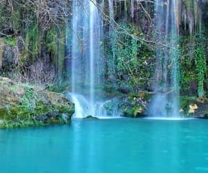 beautiful, beauty, and green image