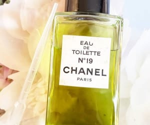 chanel, green, and cosmetics image