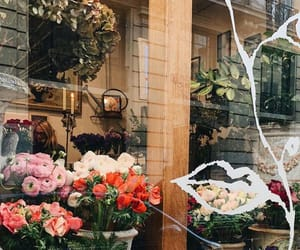 cities, flowers, and france image