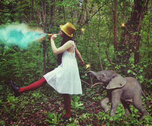 elephant and smoke image
