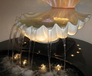 water, luxury, and seashells image