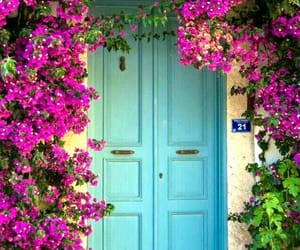 beauty, door, and flowers image