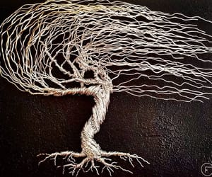 bonsai, tree, and art image