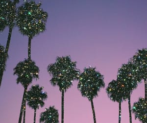 sunset, glitter, and palm trees image