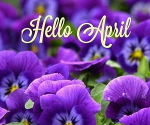 april, colors, and month image