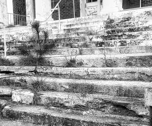 abandoned, forgotten, and black and white image