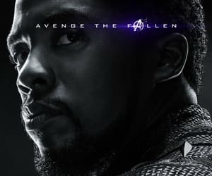 Avengers, black panther, and t'challa image