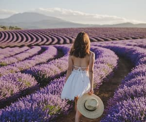 lavender, girl, and flowers image