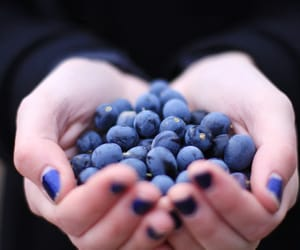 blueberry, blue, and hands image