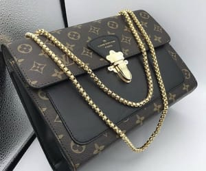 accessories, bag, and Louis Vuitton image