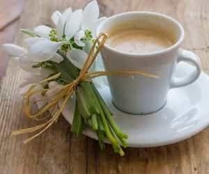 coffee, coffee break, and cozy image