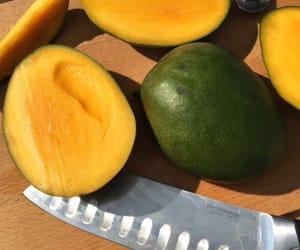 theme, fruit, and mango image