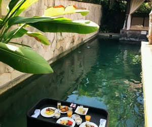 breakfast, green, and travel image