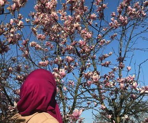 blue, hijab, and magnolia image